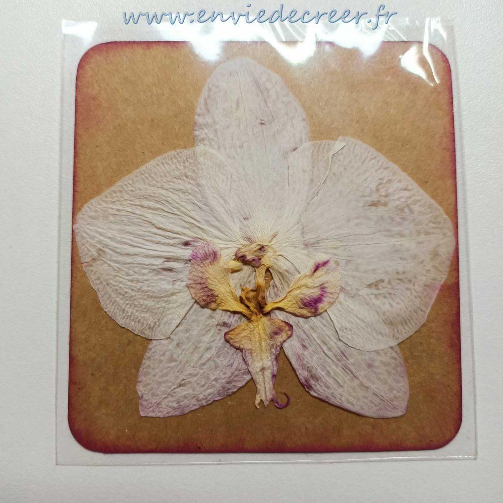 12-emballages-plastiquesr-fleur-prete